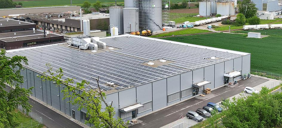Eine neue Photovoltaikanlage soll erneuerbaren Strom für die Shrimps-Farm liefern. Bild: SwissShrimp